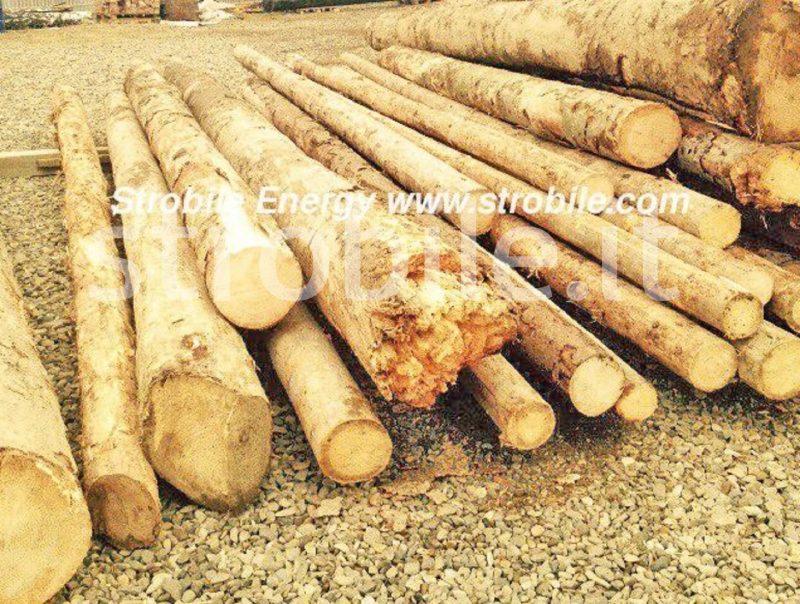 Queste sono le materie prime utilizzate per la produzione di pellet di legno vergine abete bianco. Dopo la consegna dalle montagne, il responsabile della qualità decide se la qualità del legno soddisfa gli standard interni per la produzione di pellet.